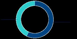 grafico-accionariado-4q20-esp